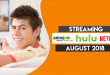 Streaming on Amazon Prime Hulu and Netflix in August 2018 FT