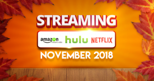Streaming on Amazon Prime Hulu and Netflix in November 2018 FT