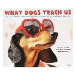 What Dogs Teach Us 2019 Box Calendar